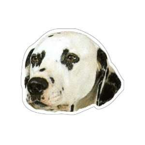 DALMATIAN   Dog Decal   sticker dogs car got window
