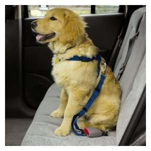 LARGE   RED   Dog Car/Truck Safety Harness   Adjustable Nylon Web with