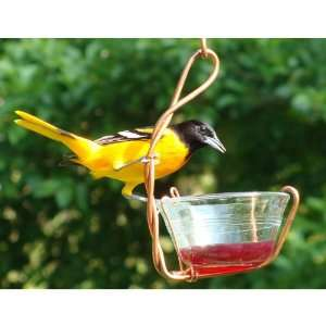 Single Jelly Cup Feeder (Bird Feeders) (Fruit and Jelly