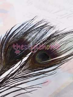 50pcs BLACK Dyed Peacock Feathers w/ Big Eyes Costume Party Favor 9.4