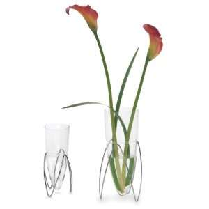 Enair Glass Vase Size Short