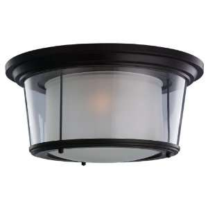 Sea Gull 78321 833 Outdoor Ceiling Light